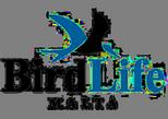 Bird Life Malta